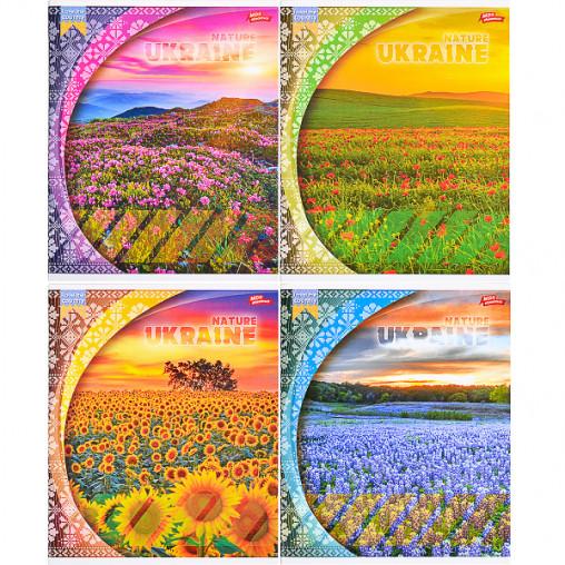 Тетрадь цветная 60 листов, линия 3008л