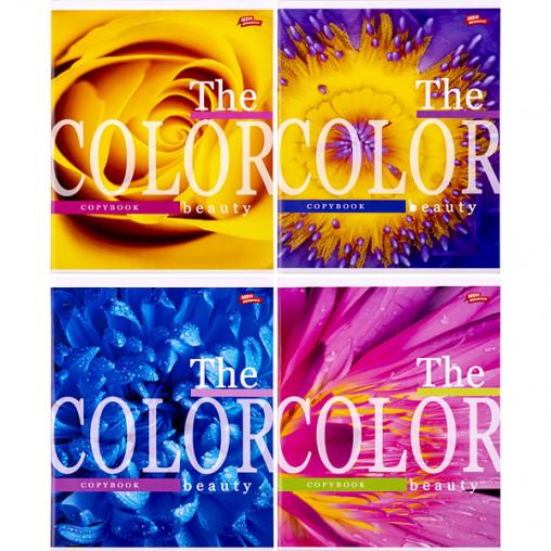 Тетрадь цветная 96 листов, клетка 3128 D