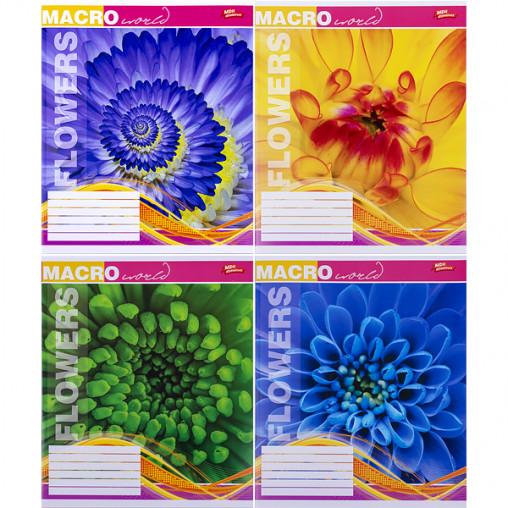 Тетрадь цветная 18 листов, клетка 3000к