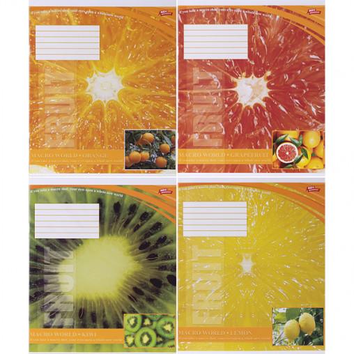 Тетрадь цветная 18 листов, клетка 2878к