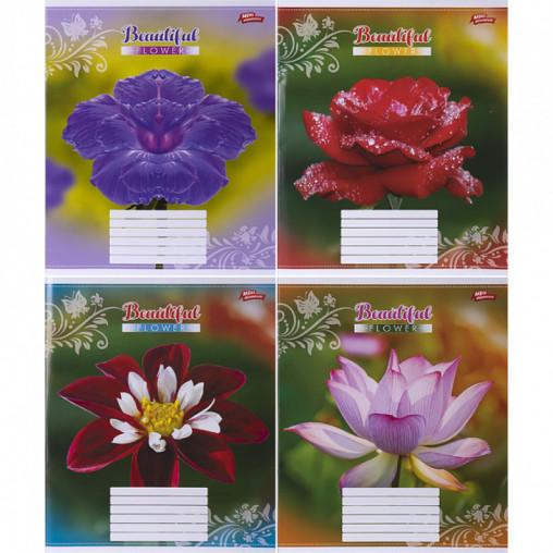 Тетрадь цветная 18 листов, линия 2987 D
