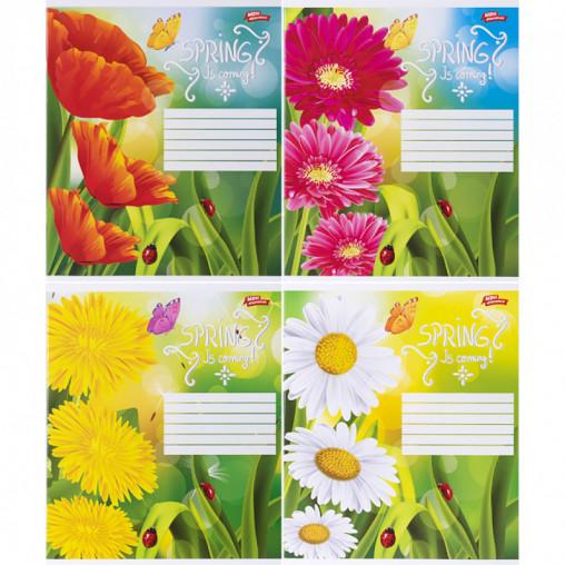 Тетрадь цветная 18 листов, линия 3097л