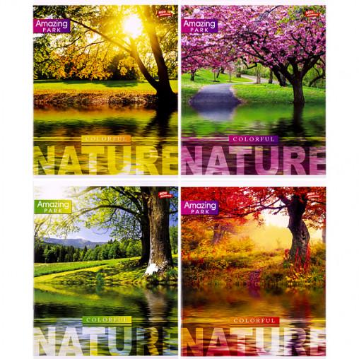 Тетрадь цветная 48 листов, линия 2704л